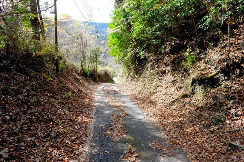 平野台高原展望所から黒川温泉へ。だいぶ降りてきた。